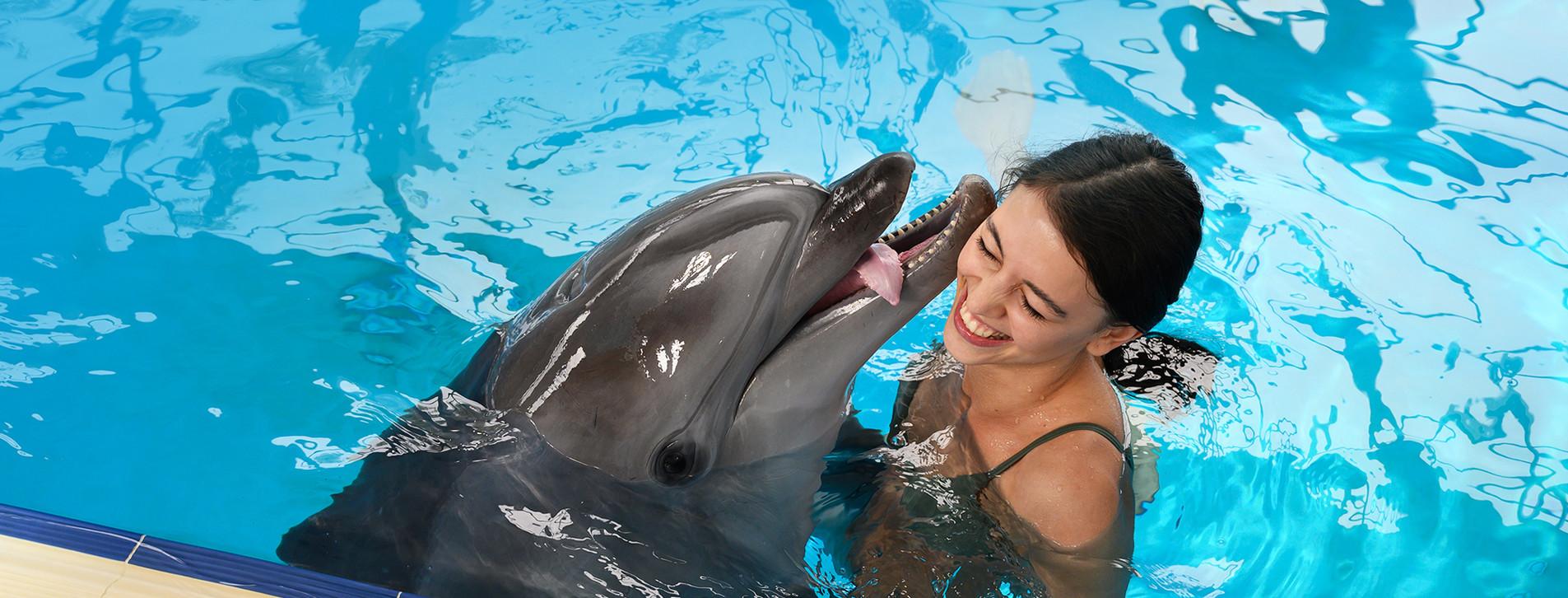 Фото - Плавання з дельфінами