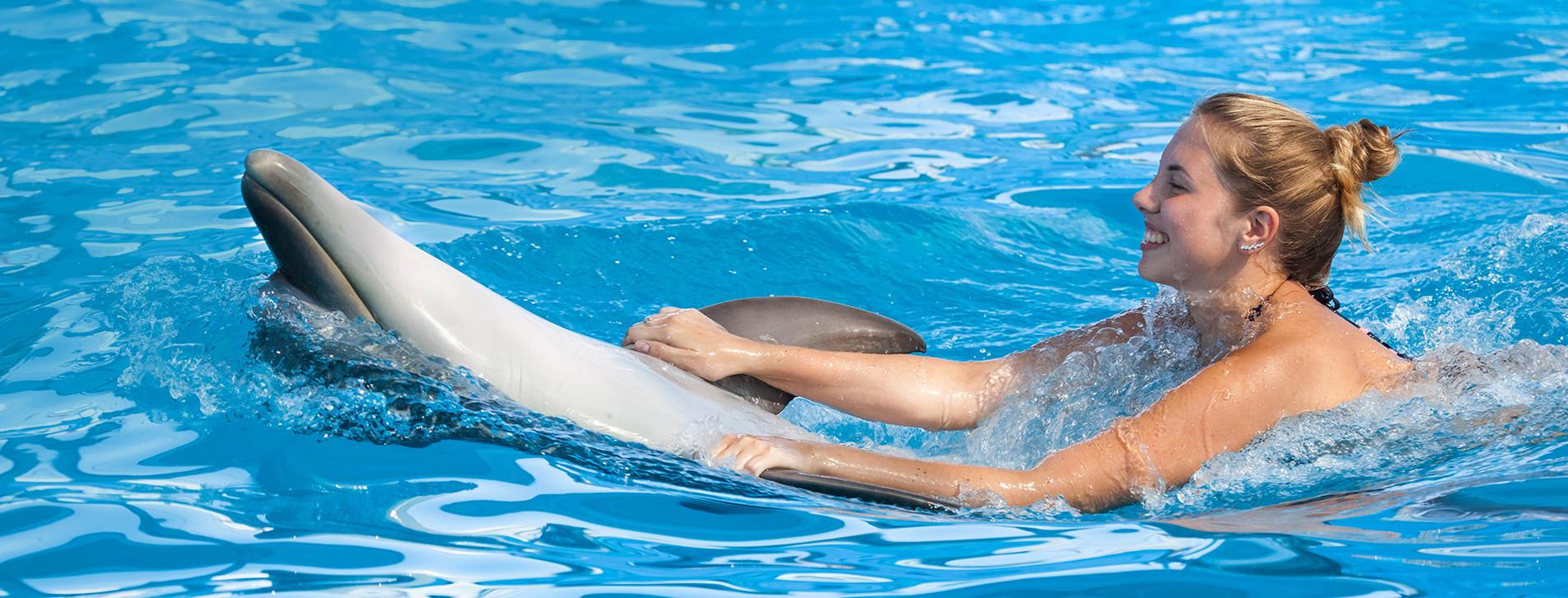 Фото - Плавання з дельфінами для двох